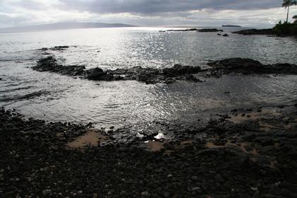 Maui Sept 09 079.JPG