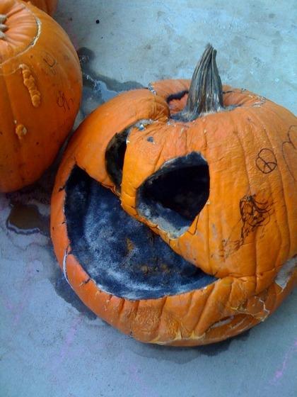 melted pumpkin 2009.jpg