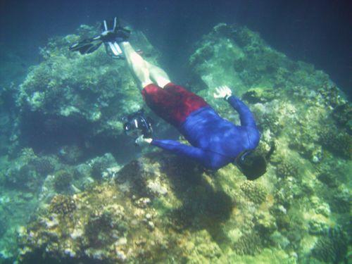 Maui underwater Sept 09 249
